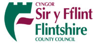 Hidden Flintshire County Council